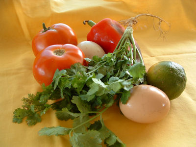 flavour your eggs with herbs and sauces